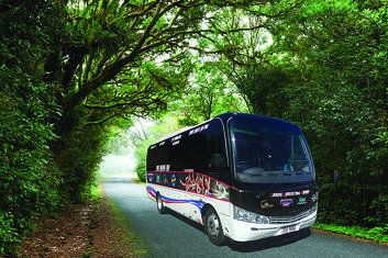 Port Douglas to Cairns City One Way Shuttle