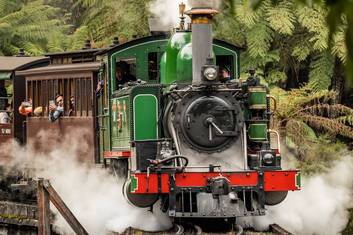 1 Day Puffing Billy, Kangaroos, Koalas and Penguins Tour