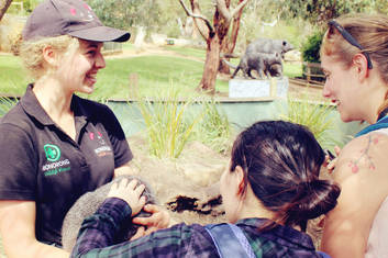 Bonorong Wildlife Sanctuary