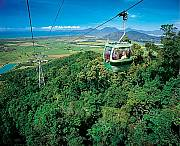Skyrail glides over the rainforest