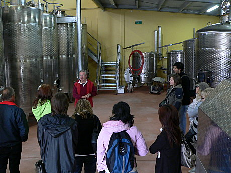 Behind the Scenes Wine Making Tour