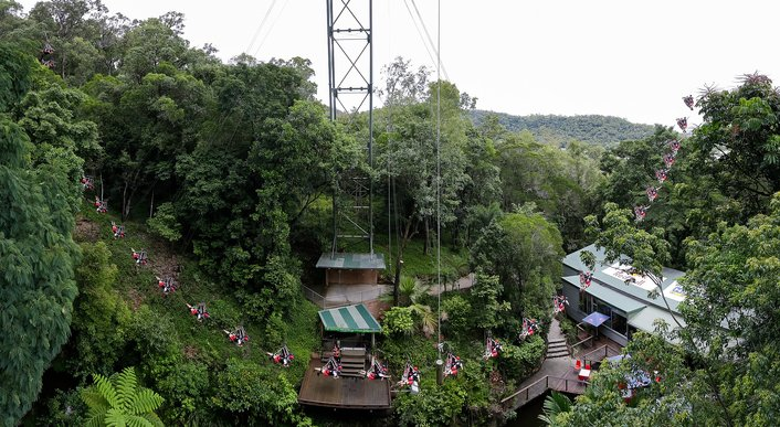 Jungle Swing Flight Path