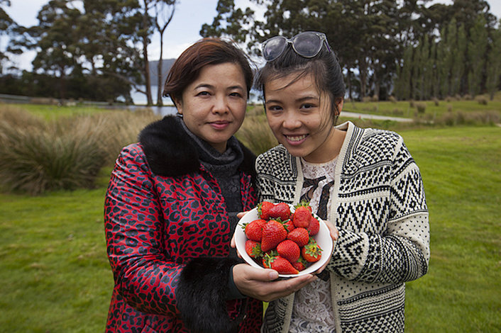 Bruny Island Berry Farm (in season)