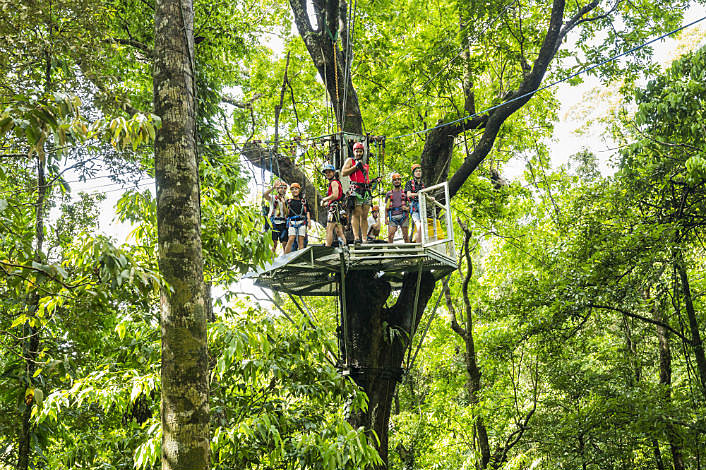 Our platforms are high up in the tree canopy