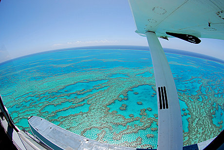 Hardy Reef at the Great Barrier Reef