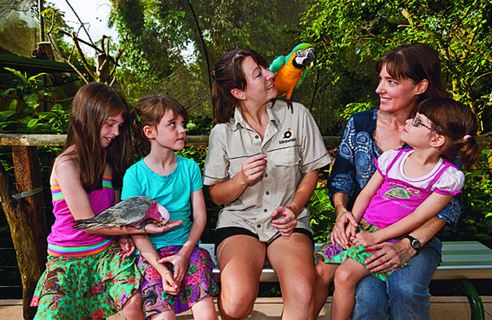 Feeding at Birdworld Kuranda