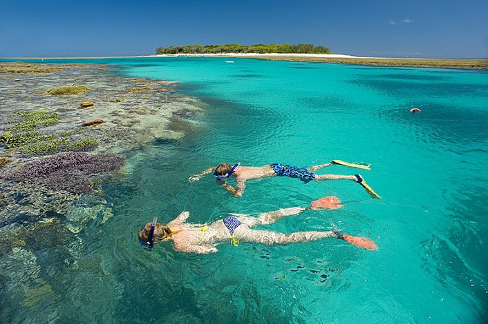 Snorkelling at the Reef