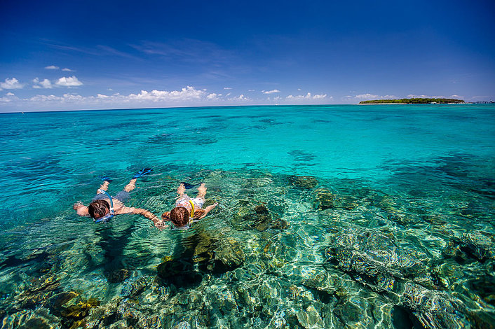 Join a boat snorkel trip offshore