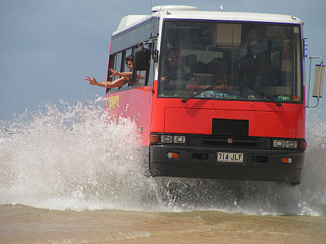Luxury 4WD Buses - Fraser Island