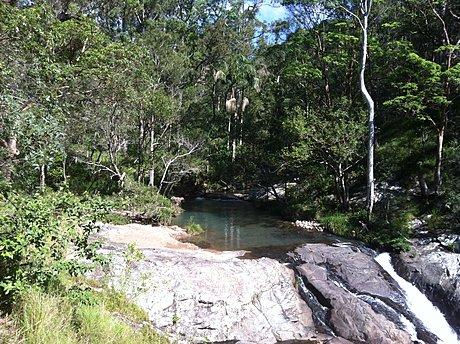 Springbrook Tamborine Rainforest Tour Tours To Go