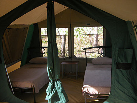 Cobourg Coastal Camp safari accommodation