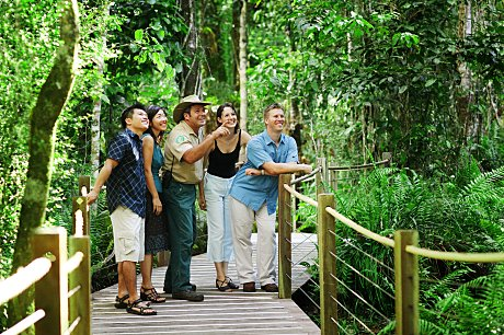 Explore the tropical rainforests on a Skyrail Ranger guided boardwalk tour.