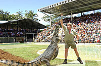 The late Steve Irwin getting cheeky with a crocodile