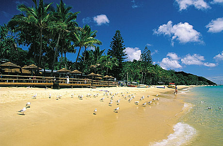 Tangalooma Island Beach Resort
