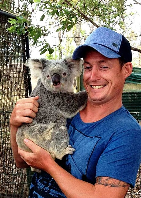 Get to hold a Koala