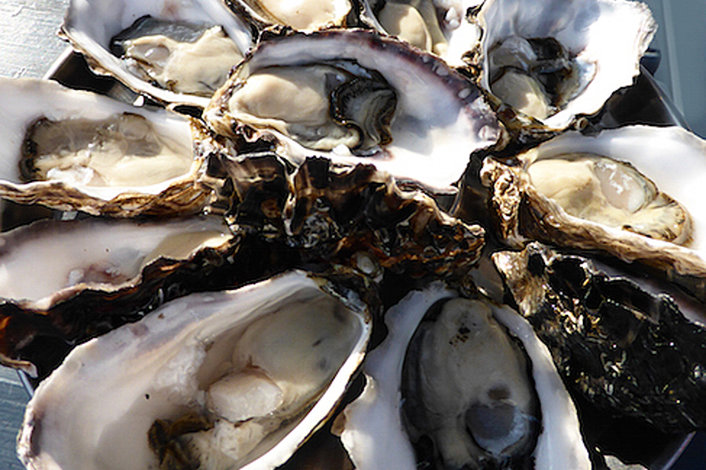 Taste our wonderful Bruny Island Oysters