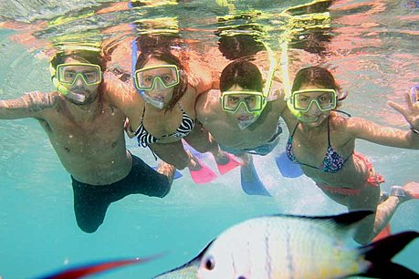 Snorkelling from Reefworld