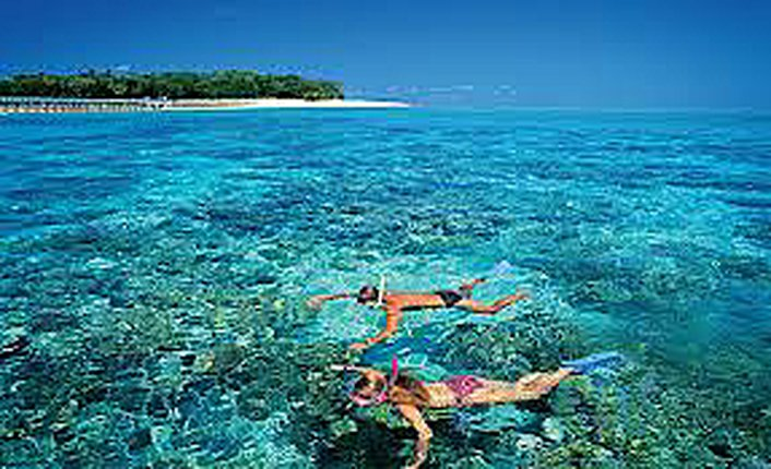 Snorkel or choose the Glass Bottom Boat Tour