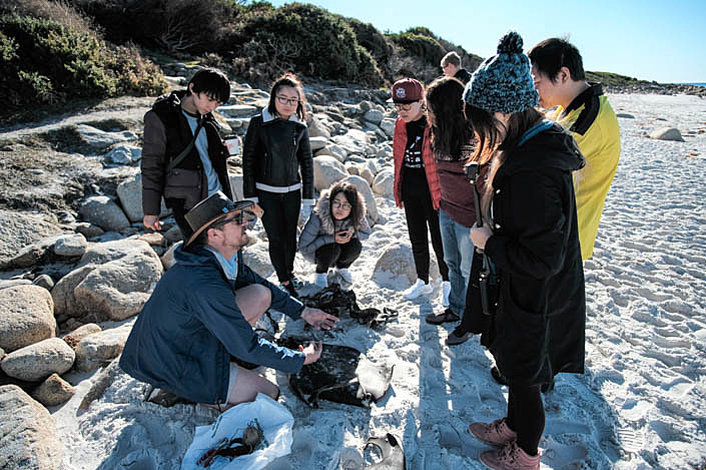 Learn about Aboriginal culture and Tasmanias Flora and Fauna