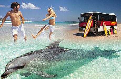 North Stradbroke Island 4wd 1 Day Safari Tours To Go
