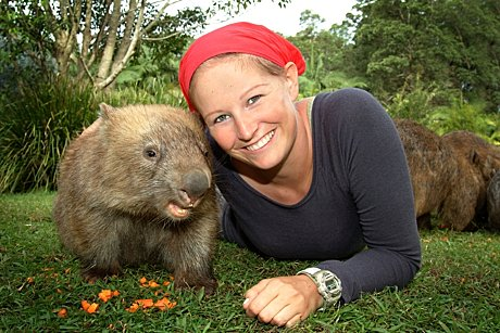 Wombat Encounter