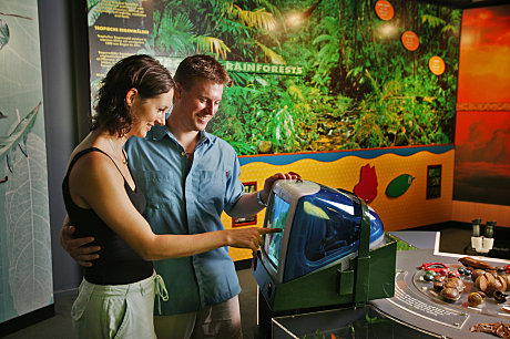 Skyrail's Rainforest Interpretation Centre is a fun learning experience for people of all ages.