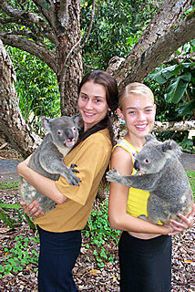 Rainforeststation - Cuddle a Koala!