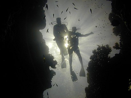 Divers Silhouette