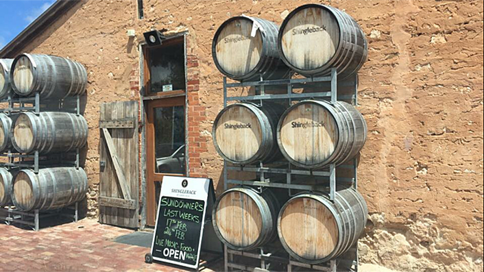 Shingleback wines