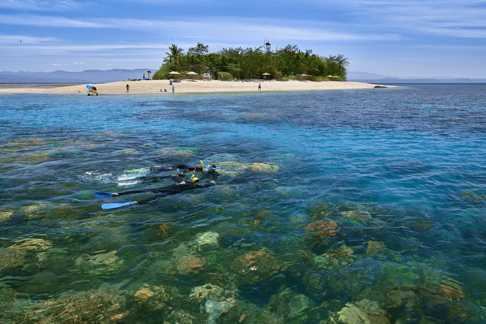 Join the free marine biologist snorkel tour