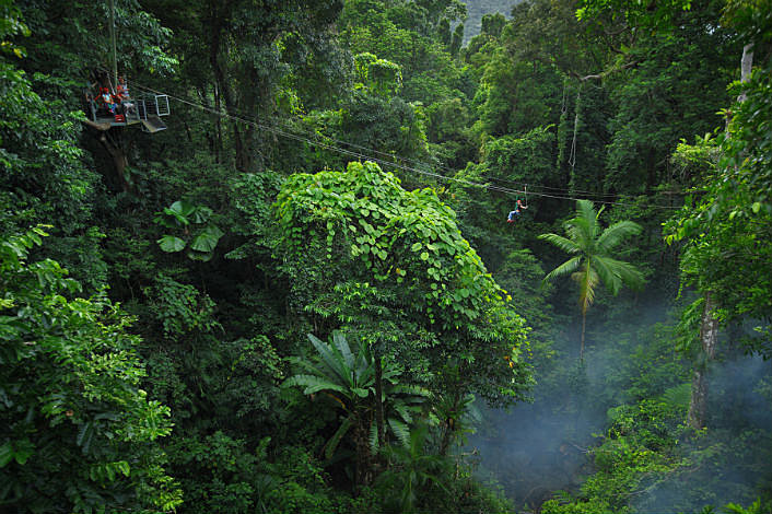 An amazing view of World Heritage Listed rainforest