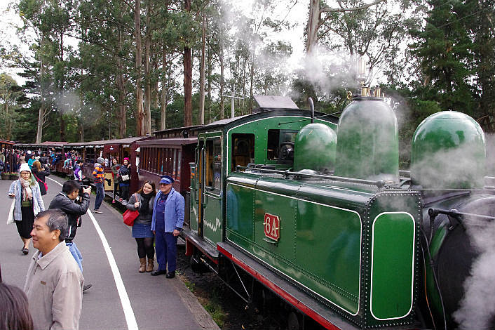 Have your photo taken with the driver of Puffing Billy