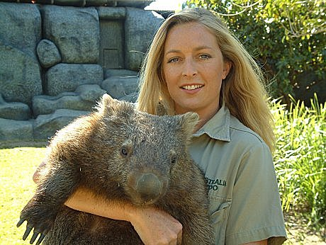 Megsy is Australian Day Tours/JPT's sponsored wombat