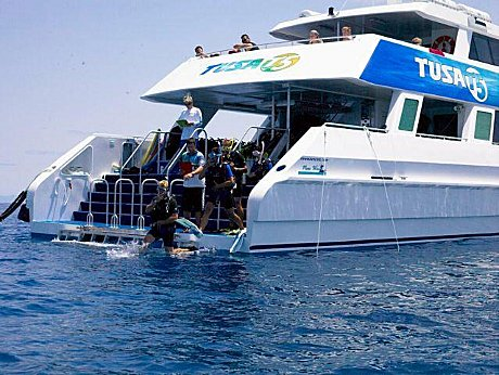 Diving and snorkelling directly from the boat