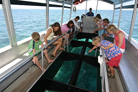 Discover the reef in a glass bottom boat, included in your day