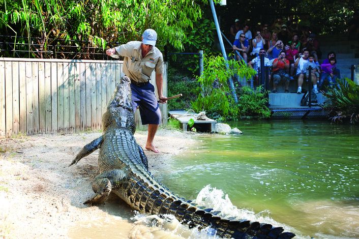 Croc Attack Show at Hartley's