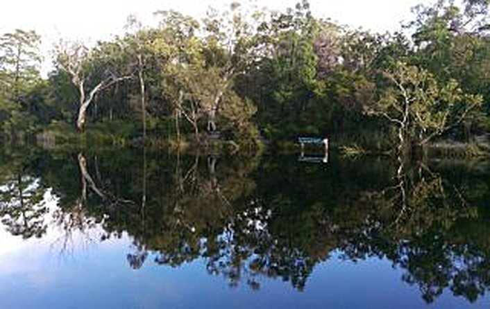 Reflections in the calm Everglade waters.