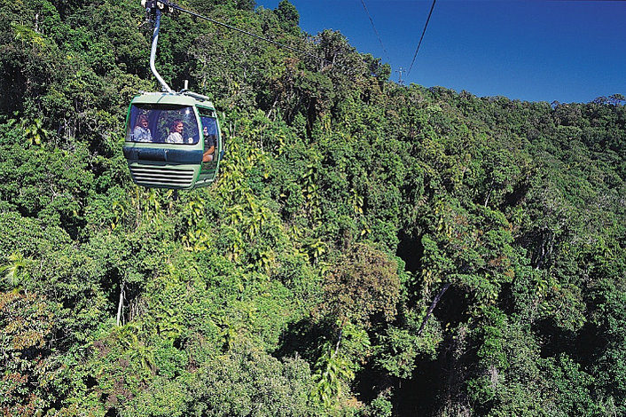 Skyrail Rainfroest Cableway