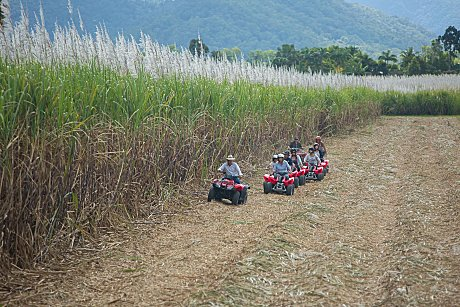 ATV Riding near Cane fields at Cairns