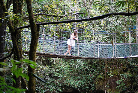 Swing bridge in the Mossman Gorge