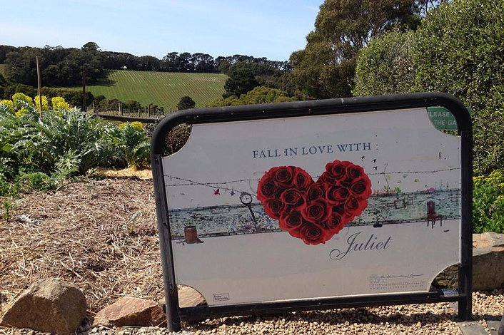 T'Gallant Winery - Mornington Peninsula