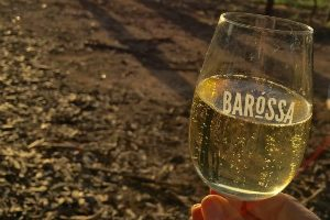 A glass of white wine in a Barossa Glass