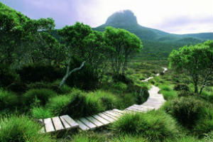 cradle Mountain walking path