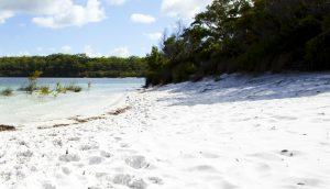 Beach scene Fraser Island