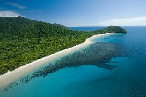 Cape tribulation beach where the reef meets the rainforest