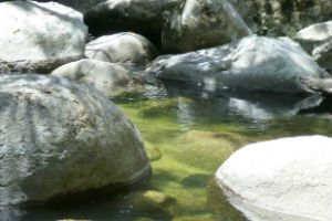 Crystal clear waters of Mossman Gorge
