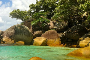 Nudey Beach Fitzroy Island near Cairns