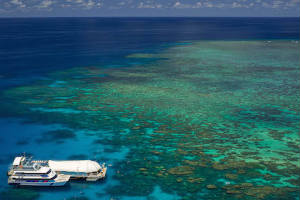 Great Barrier Reef - Norman Reef