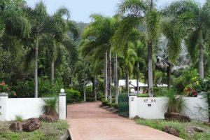 Entrance driveway to Shanee Prana resort