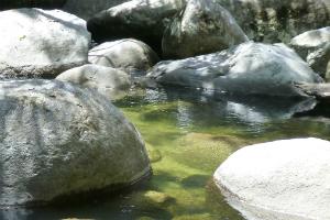 rockpool at Mossman Gorge